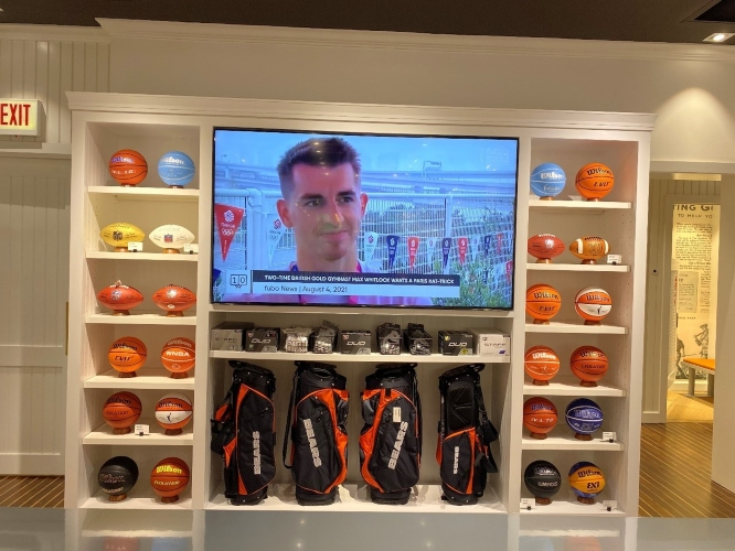 collection of basketballs and footballs